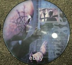 Tool Picture Disk Lot Rare Hard To Find Cesaro Summability-lateralus Promo-sober
